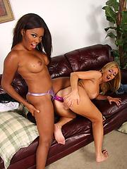 Rough ebony girl dominates and fucks white slut