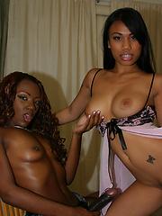 Nasty interracial lesbians fucking